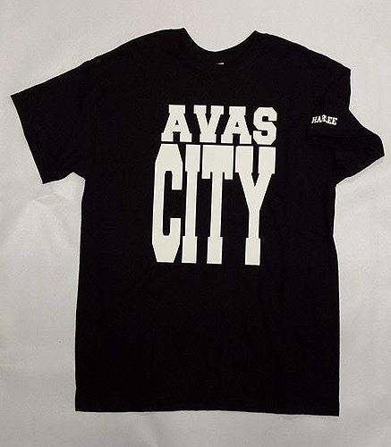 Harlee Co. Avas city
